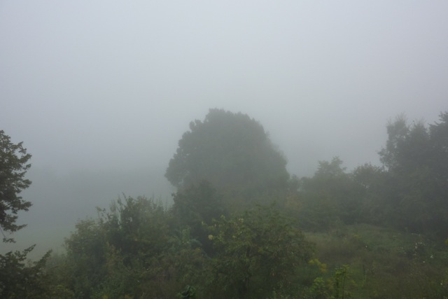 Nebel in Corvey